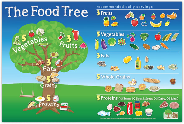 The Food Tree Magnetic Board, with magnet in use