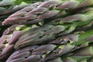 Asparagus Says Spring!!